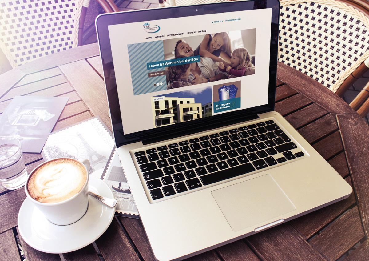 BGO_Website_1