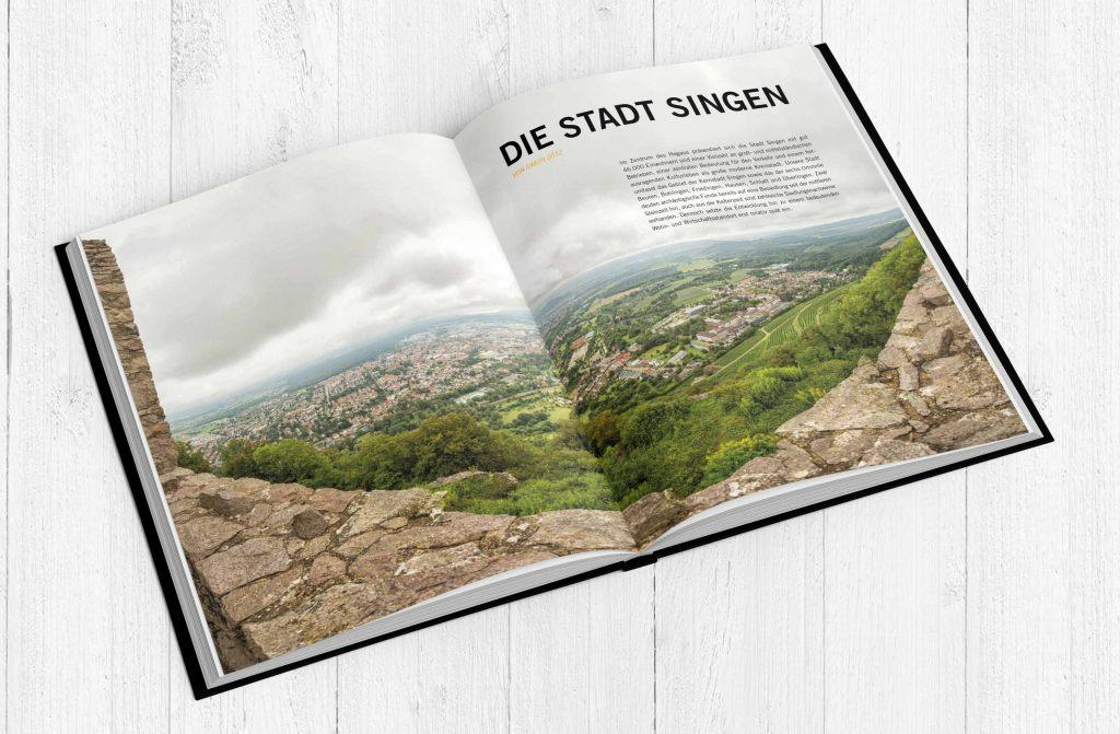 FW-Buch3